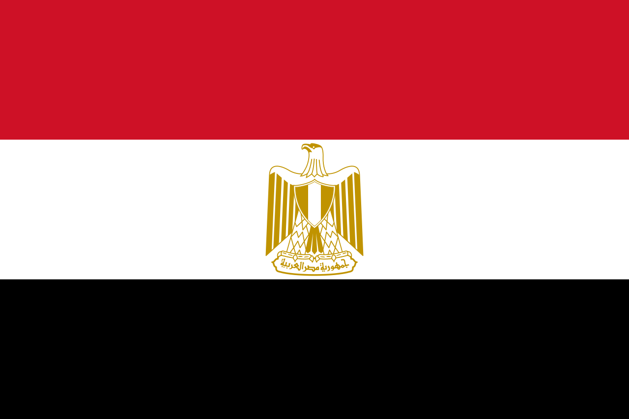 expat guide to egypt healthcare system