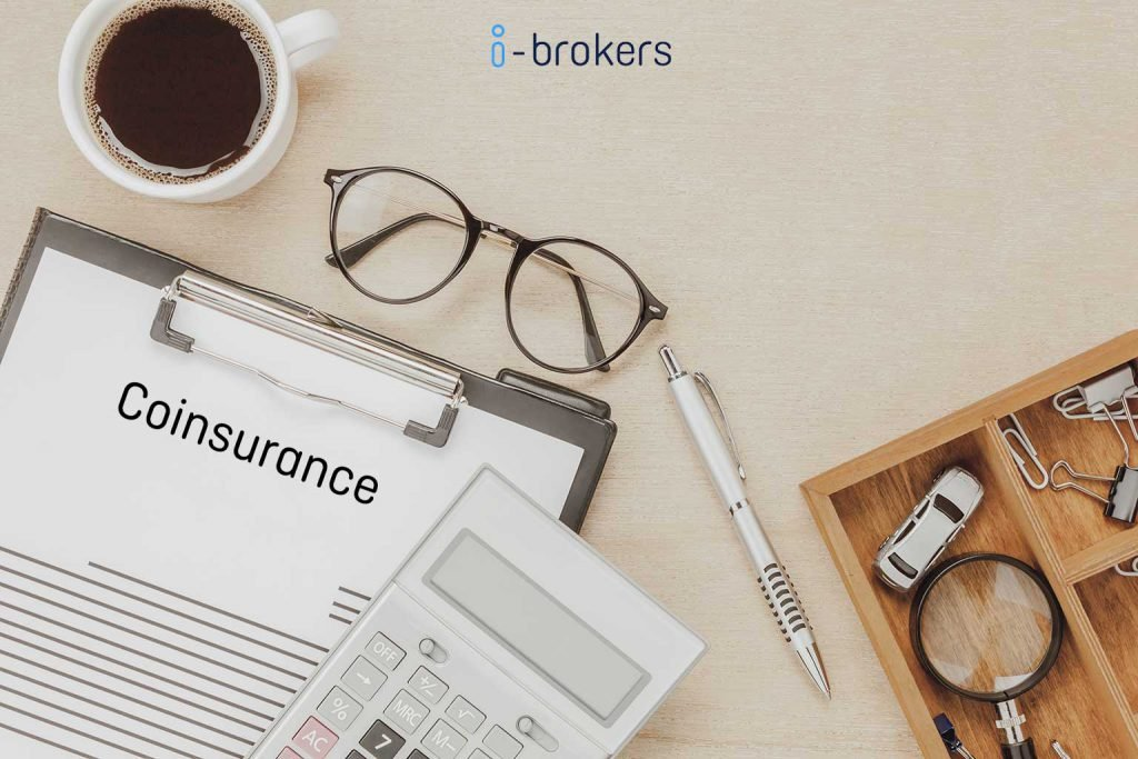 what does coinsurance mean